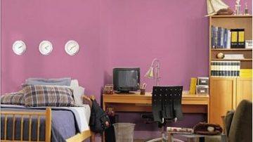 Colora le pareti di casa tua