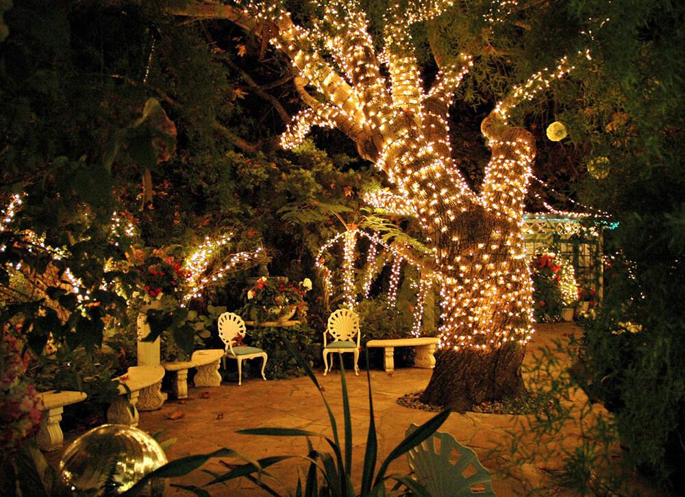 Luci di Natale nel giardino
