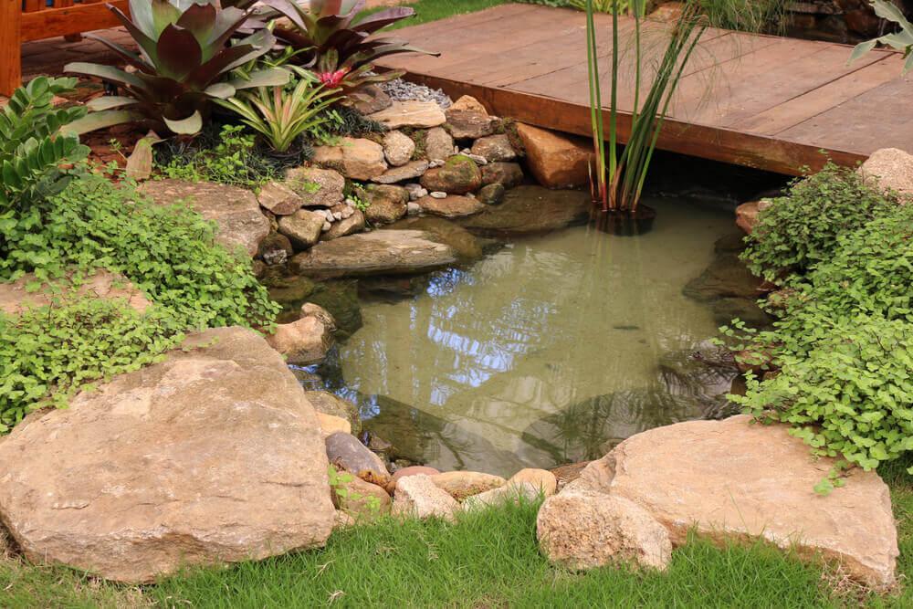 You are currently viewing Come fare un laghetto ornamentale per il giardino