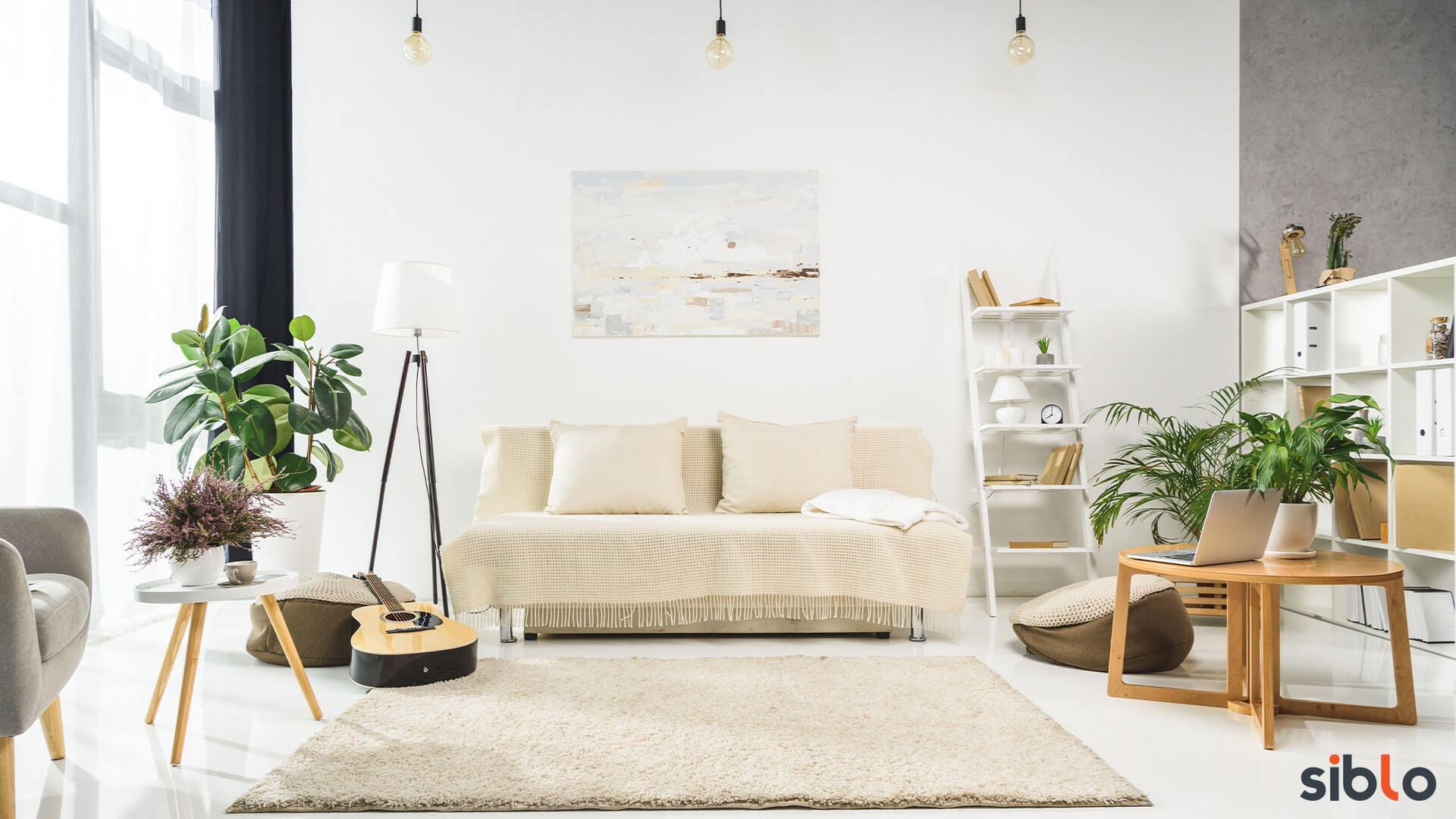 You are currently viewing Come scegliere il divano nuovo per la casa