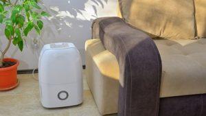 Read more about the article Scegliere il deumidificatore per la casa: alcuni consigli utili