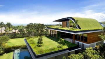 tetti verdi: vantaggi e risparmi