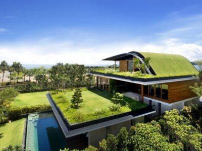 Tetti verdi: il futuro urbano eco-sostenibile