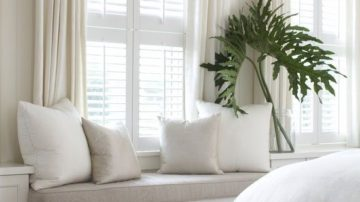 piante nelle finestre